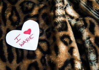 Waxie Moon-04-©LaRae Lobdell